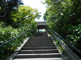 山門に向かう急階段、これが日本のお寺です