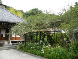 本堂右の庭園