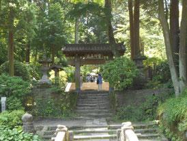 杉木立、 山門へ
