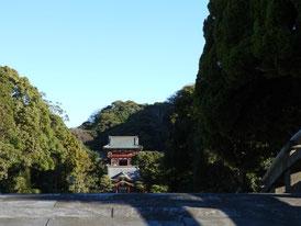 太鼓橋から観る本宮