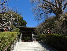 山門への石段