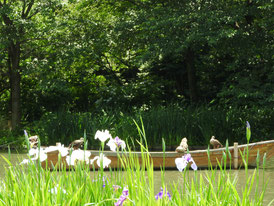 花菖蒲と小舟