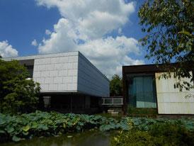 平家池より、8月の美術館