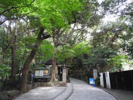 文学館門への道