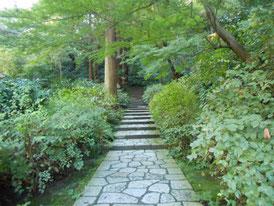 山門への階段は緑につつまれて風情があります