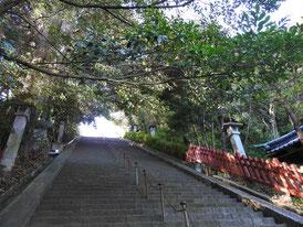 麓山神社への急階段
