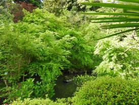 境内の庭園