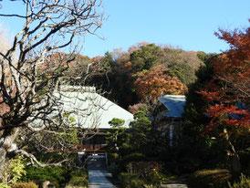 本堂への参道