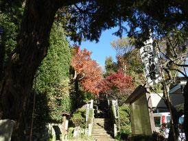 杉本寺入り口