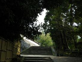 桂昌庵から松領院への石段