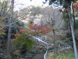 紅葉の参道急階段