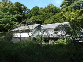 白蓮舎から観る松ヶ岡宝蔵
