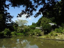 初秋の大覚池