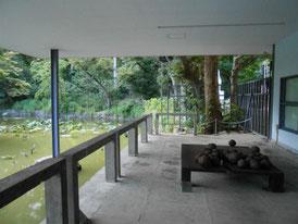 回廊から平家池