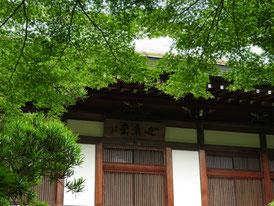 玄関上の「迦葉堂」名木
