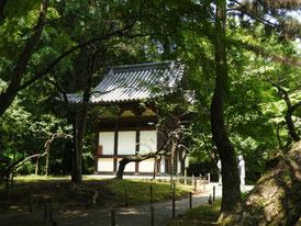蓮華院からみる旧天瑞寺寿塔覇堂