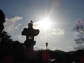 源氏池への灯籠