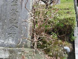 石階段横の石碑