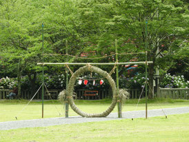夏越大祓式の茅の輪くぐりの輪