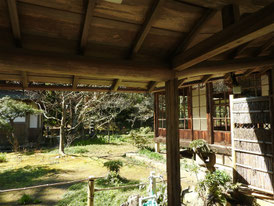 書院・客殿横の庭から本堂をみる