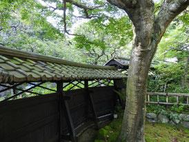 本堂の庭園から観る塀