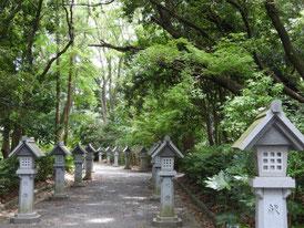正参道から神社への灯籠
