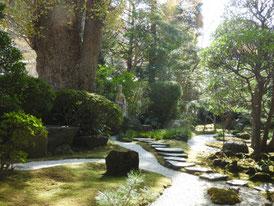 山門の参道横の、日本庭園