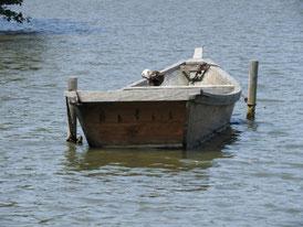 大池の小舟