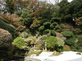 古山水庭園