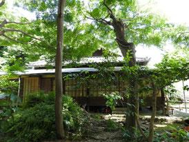 竹林から書院