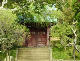 樹木に包まれる山門