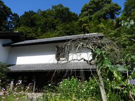 参道から観る松ヶ岡宝蔵