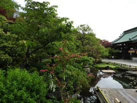 日本庭園から山門