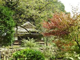 前庭園から本堂を望む