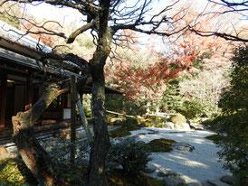 喜泉庵の庭園
