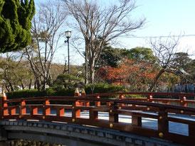 太鼓橋横から源氏池を望む