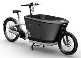 Carqon Lasten e-Bikes in der der e-motion e-Bike Welt Hanau