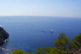 Aussicht auf die Küste Ibizas