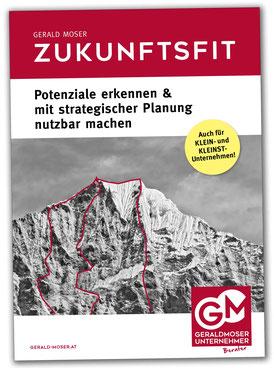 gerald-moser-ebook-arbeitsbuch-strategische-planung-download