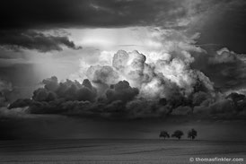 Thomas Finkler Photography, fine art nature black and white photography, 3 trees, cloudscape photography, dramatic sky, grain field, scenery, monochrome