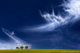 Fine art photography, art photography, photographic art, nature and landscape, cloudscape, sky, trees, minimal, stunning