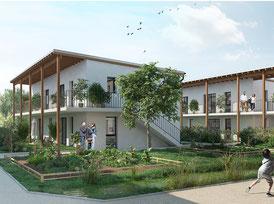 esquisse du projet d'habitat participatif des Jardin du Laü à Pau