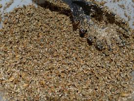 Getreidesubstrat Mischung aus Roggen, Vermiculit und Gips