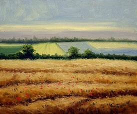 Cuadro con campos sembrados