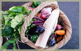 Einkauf plastikfrei, Korb mit Gemüse, Auflistung der Einkaufsmöglichkeiten im Landkreis Pfaffenhofen