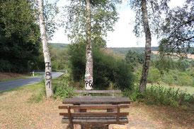 """Nicht nur die Wandertafel des Naturpark Hochtaunus wurde beschädigt. Auch auf den umstehenden Bäumen und der Sitzgruppe am Naturparkplatz """"Schützenberg"""" wurden Schmierereien  hinterlassen."""