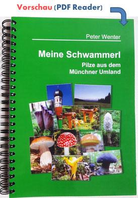 Buchvorschau Meine Schwammerl - Pilze aus dem Münchner Umland