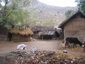 ラフールナガール村の様子