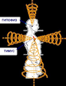 Спирали альфа-омега излучения