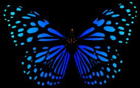 2 - Im Insektenhaus